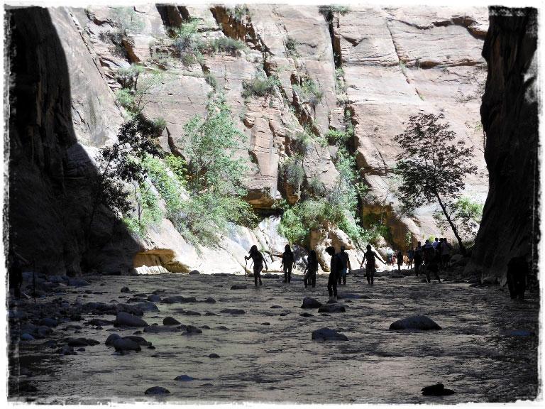 Zion National Park — он покорил нас, а мы покорили его вершины