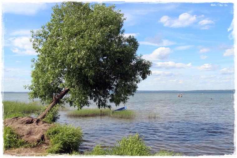 По России с любовью: Переславль-Залесский и Плещеево озеро
