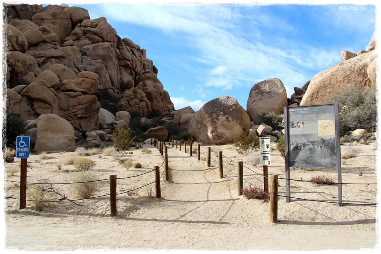 Не знаете как разнообразить путь и избежать пробок при поездке из Лос-Анджелеса в Лас-Вегас? Joshua Tree вам в помощь