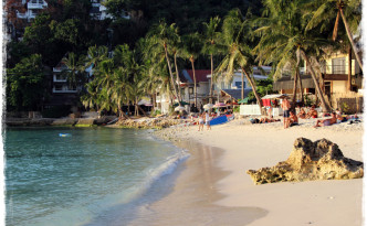 web_phil_diniwid_2080