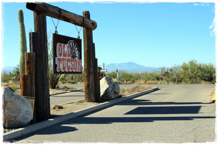 Аризона. Национальный парк Сагуаро - углубиться в природу по самые (помидоры) кактусы