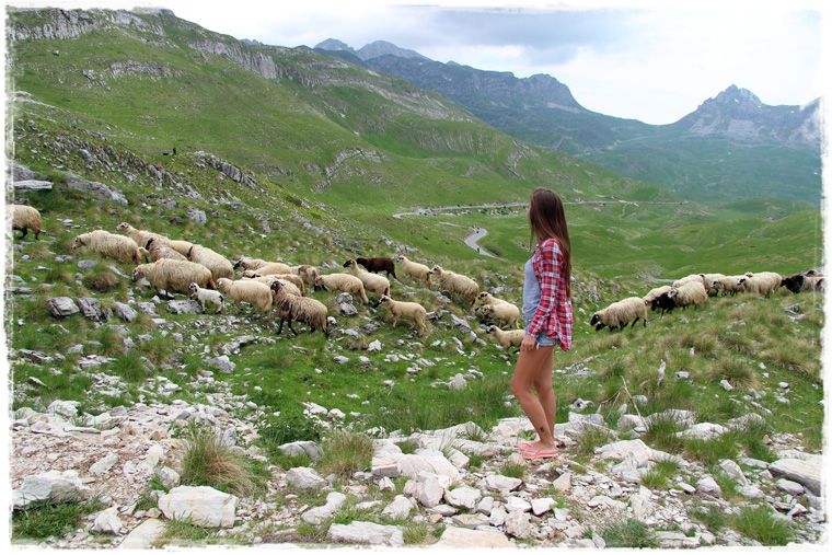Балканский маршрут. Черногория и Хорватия за 2 недели на авто