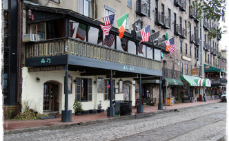 web_usa_savannah_8383