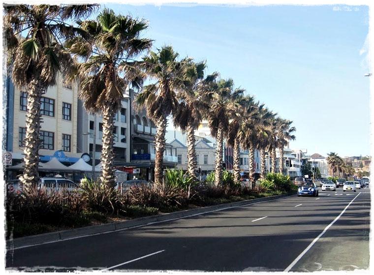web_syd_beach_005