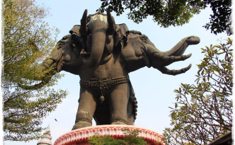 web_th_erawan_8394