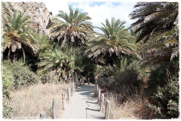 Южный Крит. Пляж и пальмовая роща Превели