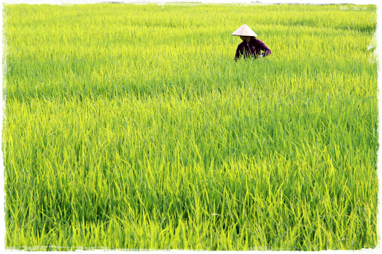 Вьетнам - удивительный Индокитай